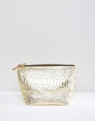 Asos Snake Embossed Leather Make Up Bag Gold