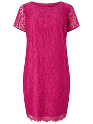 Adrianna Papell Plus Size Katie Lace Shift Dress Hot Pink