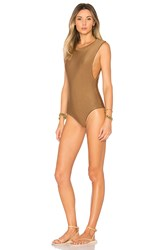 Acacia Swimwear Mesh Cloud9 One Piece Brown