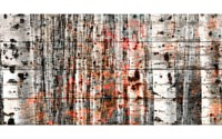 Parvez Taj Tree Ski Reclaimed White Barn Siding Wood Art