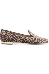 Charlotte Olympia Nocturnal Embroidered Leopard Print Velvet Slippers Leopard Print