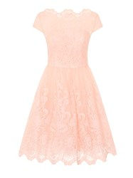 Chi Chi London Baroque Style Tea Dress Pink