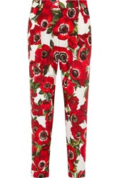 Dolce And Gabbana Floral Print Cotton Tapered Pants Cream