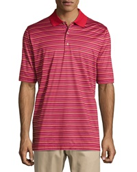 Bobby Jones Eagle Striped Polo Shirt Cambridge