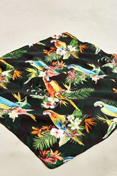 Urban Outfitters Parrot Bandana Black