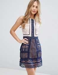 Adelyn Rae Lace Contrast Shift Dress Off White Navy Multi