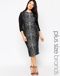 Club L Plus Midi Dress With Leopard Print Panel Blackleopard