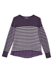 Dash Stripe Jumper With Woven Hem Purple