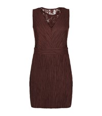 Allsaints Ula Lace Insert Dress Female Burgundy