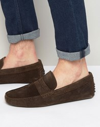 Aldo Feiria Suede Penny Loafer Drivers Brown