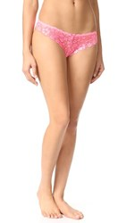 Honeydew Intimates Camellia Lace Thong Bubble Pop