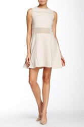 Endless Rose Mesh Inset Fit And Flare Dress