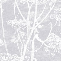 Cole And Son Cow Parsley Wallpaper 95 9049