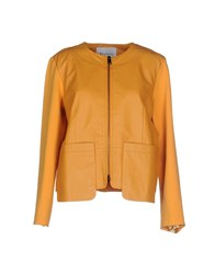 Max And Co. Coats And Jackets Jackets Women Ocher
