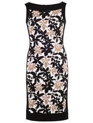 Chesca Band Trim Fancy Print Dress Ivory Black
