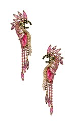 Elizabeth Cole Daya Earrings In Pink.