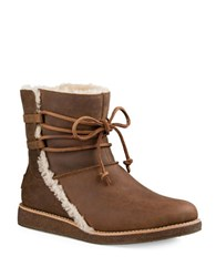 Ugg Luisa Sheepskin Ankle Boots Chocolate