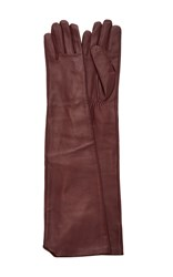 Paule Ka Long Leather Gloves Red
