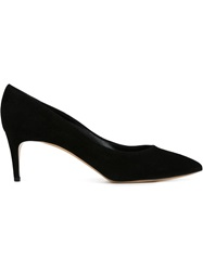 Casadei Pointed Toe Pumps Black