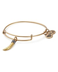 Alex And Ani Leather Expandable Wire Bangle Gold