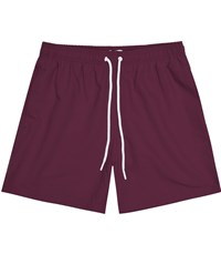 Reiss Sonar Drawstring Swim Shorts In Bordeaux