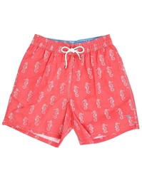 Hackett Coral Sea Horse Volley Swim Shorts