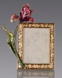 Brocade Floral 3' X 4' Frame Jay Strongwater