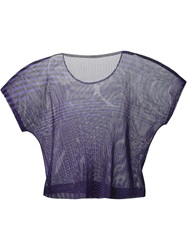 Pleats Please By Issey Miyake Striped Mesh T Shirt Blue