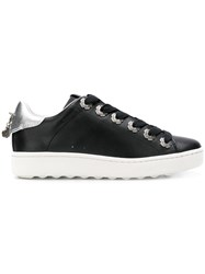 Coach Low Top Sneaker Black