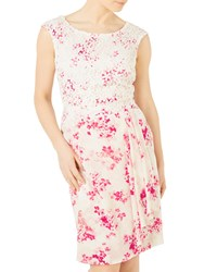 Jacques Vert Petite Flower And Lace Dress Multi Pink
