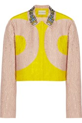 Mary Katrantzou P Two Tone Alphabet Jacquard Jacket Pink