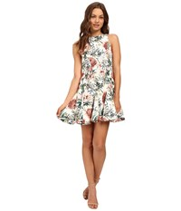 Style Stalker Flora A Line Dress Flora Print Women's Dress Brown