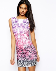 Lipsy Bodycon Dress In Ombre Animal And Floral Print Multi