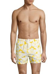 North Sails Volley Printed Swim Trunks Multicolor