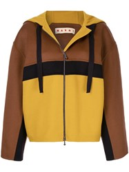 Marni Oversized Hooded Jacket Brown