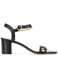 Tila March Chunky Heeled Ruffle Strap Sandals Black