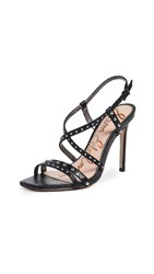 Sam Edelman Lennox Sandals Black