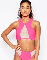 Jaded London Pink Mesh Insert Bikini Top Pink