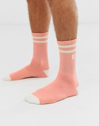 Element Clearsight Socks In Pink