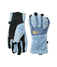 The North Face Denali Thermal Etip Glove Tofino Blue Cool Blue Extreme Cold Weather Gloves