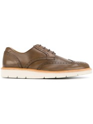 Hogan Sporty Brogues Brown