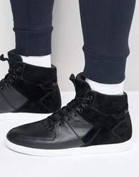 Boxfresh Camberwell Hi Top Trainers Black