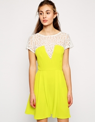 Love Skater Dress With Lace Detail Lime