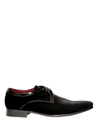 Fratelli Borgioli Snake Embossed Velvet Derby Shoes Black