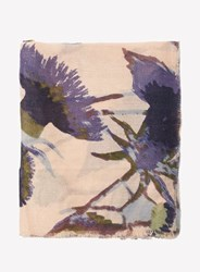 Dorothy Perkins Thistle Floral Print Scarf Multi Colour