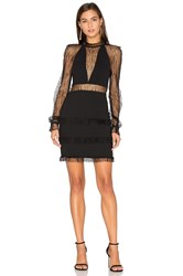 Nicholas Filigree Lace Halter Plunge Dress Black