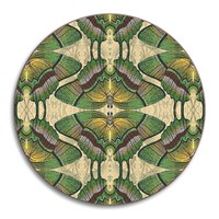 Avenida Home Patch Nyc Wildlife Coaster Butterfly