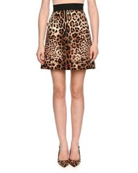 Dolce And Gabbana Jewel Embellished Leopard Print Shantung Skirt