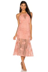 Endless Rose Mermaid Fit Lace Dress Pink