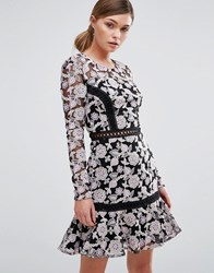 True Decadence Lace Dress With Contrast Ladder Detail And Flippy Skirt Black Lilac